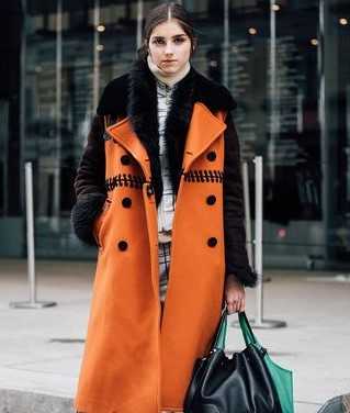 v-fur-and-orange